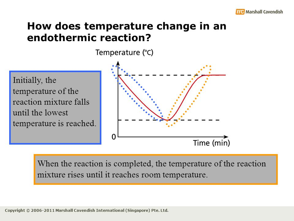 How does temperature change in an endothermic reaction