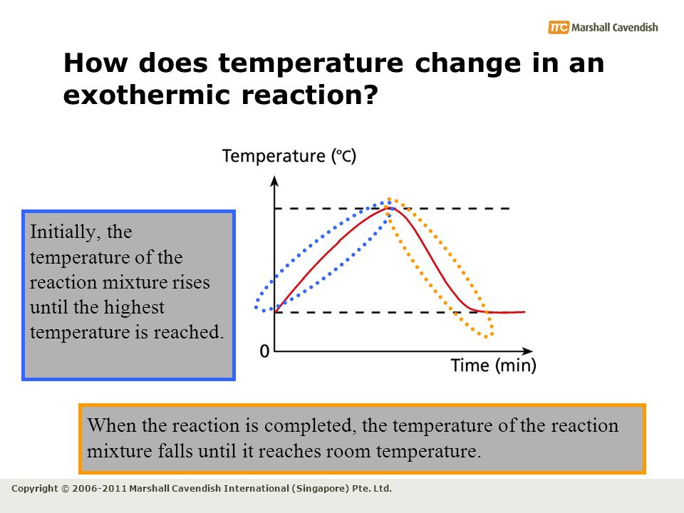 How does temperature change in an exothermic reaction