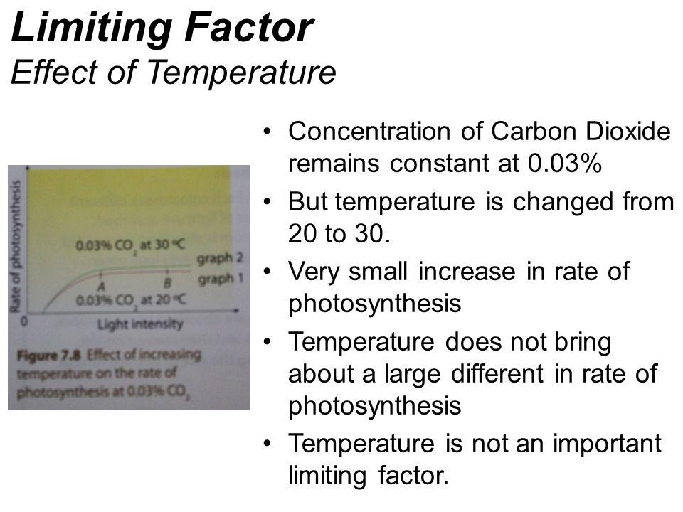 Limiting Factor Effect of Temperature
