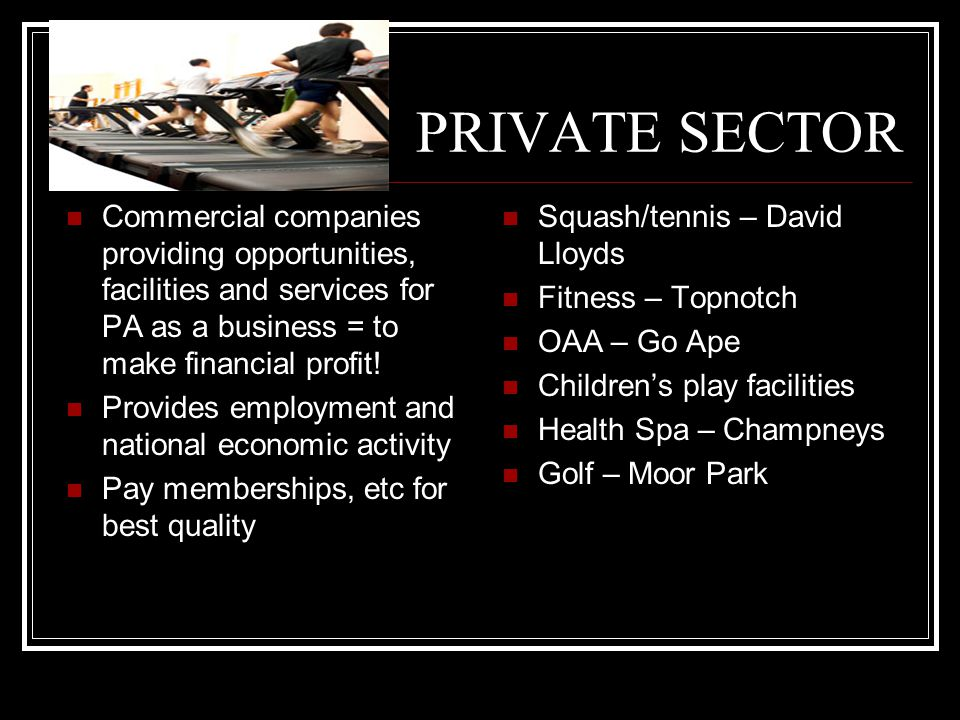 PRIVATE SECTOR Commercial companies providing opportunities, facilities and services for PA as a business = to make financial profit!