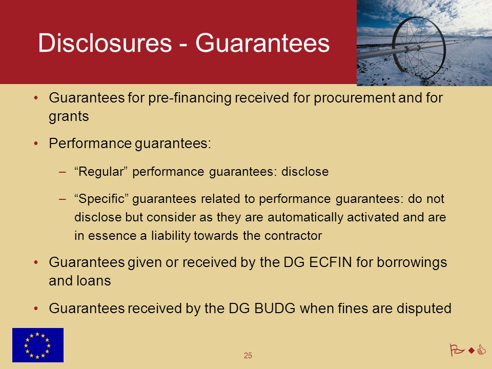 Disclosures - Guarantees