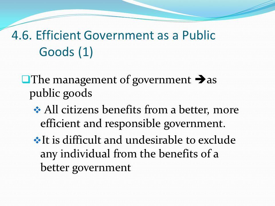 4.6. Efficient Government as a Public Goods (1)