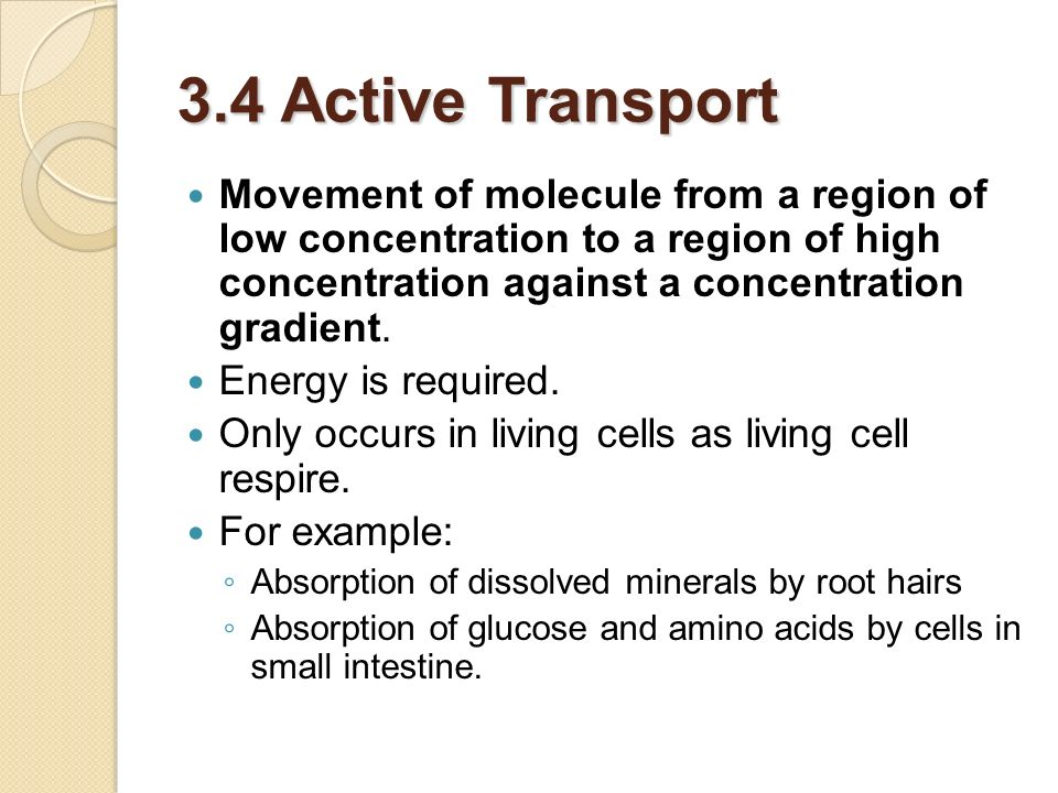 3.4 Active Transport Movement of molecule from a region of low concentration to a region of high concentration against a concentration gradient.