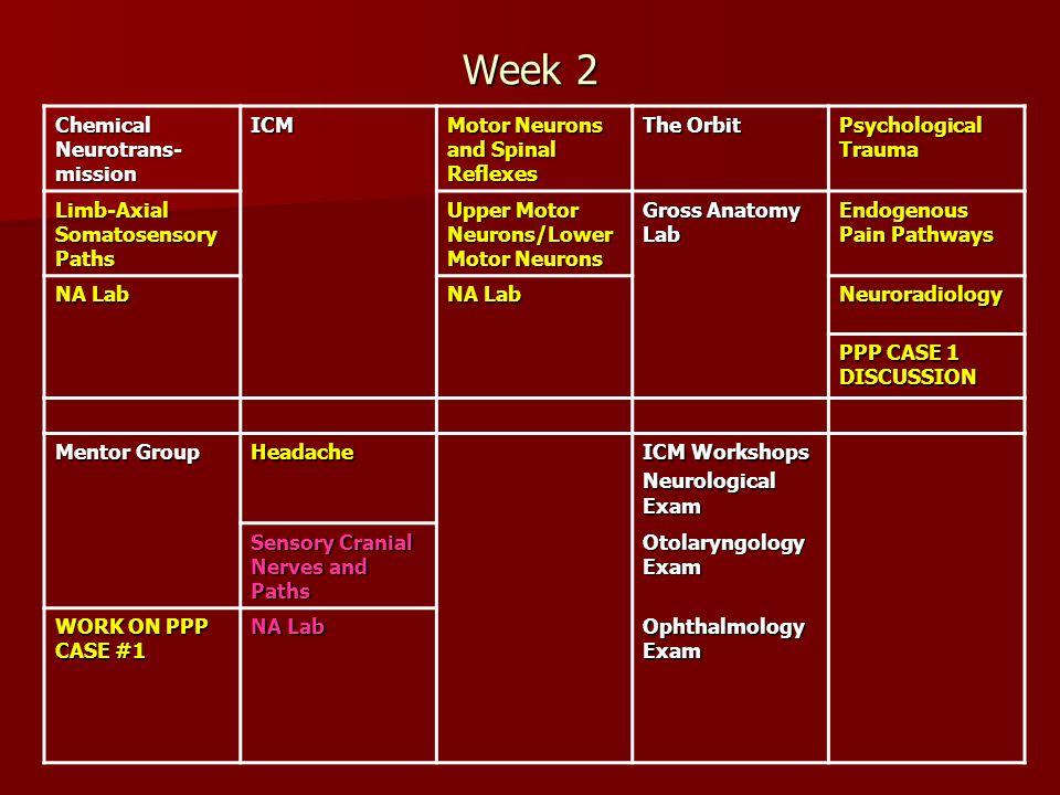 Week 2 Chemical Neurotrans-mission ICM