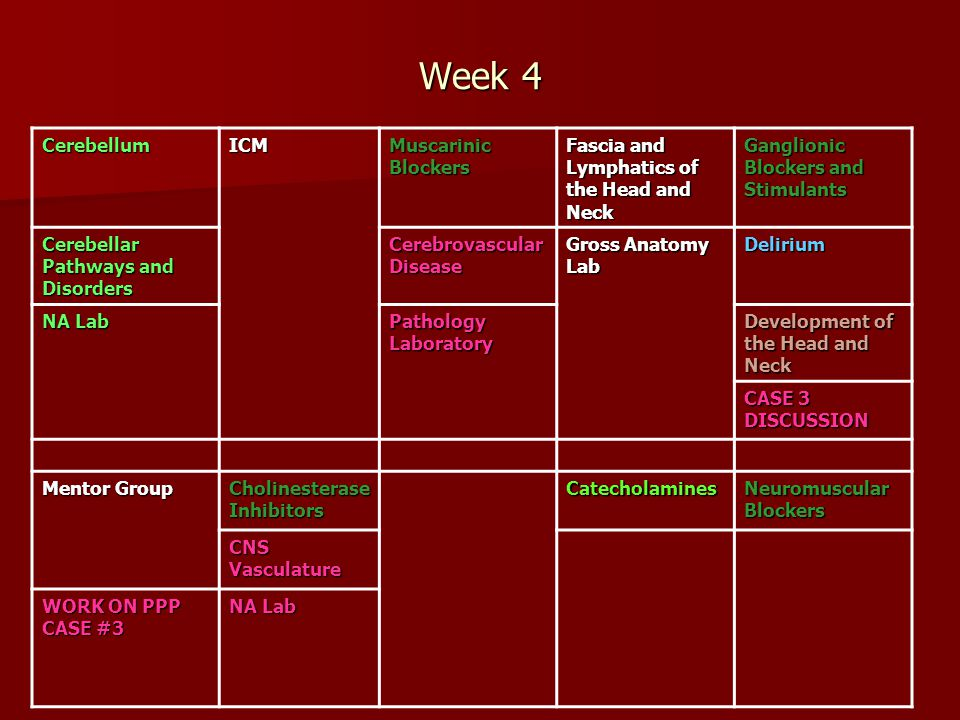 Week 4 Cerebellum ICM Muscarinic Blockers