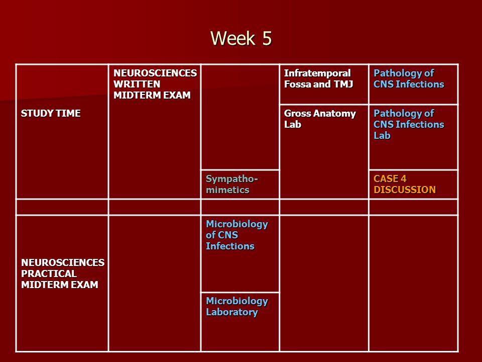 Week 5 NEUROSCIENCESWRITTEN MIDTERM EXAM Infratemporal Fossa and TMJ