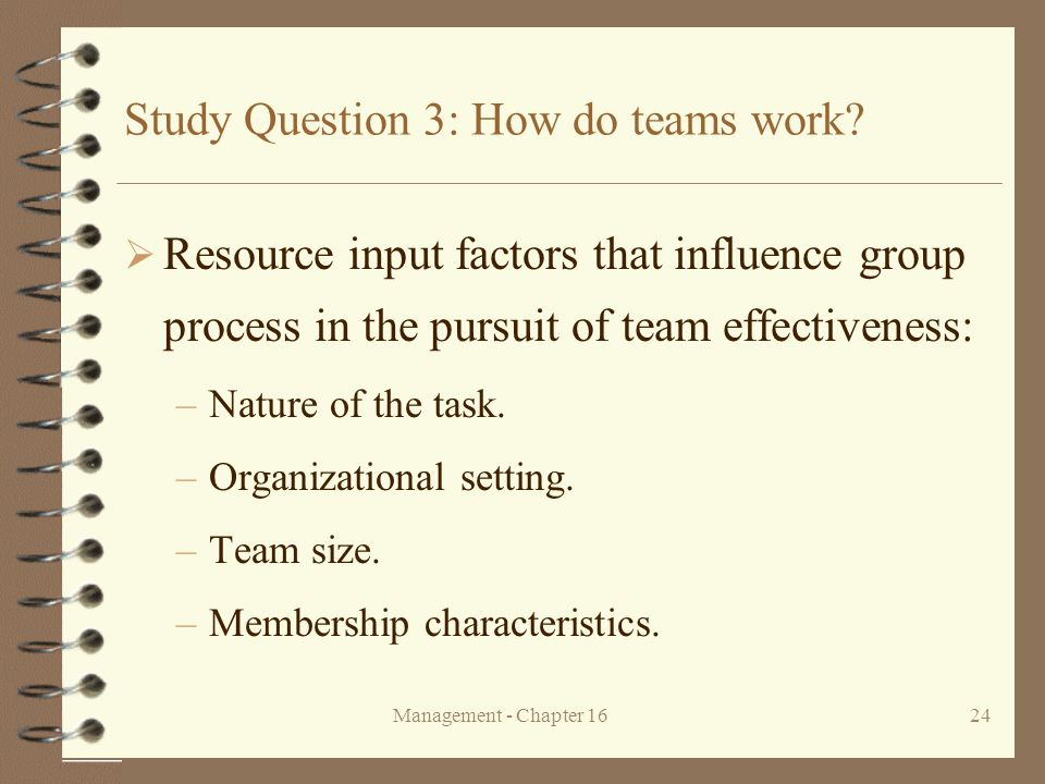 Study Question 3: How do teams work