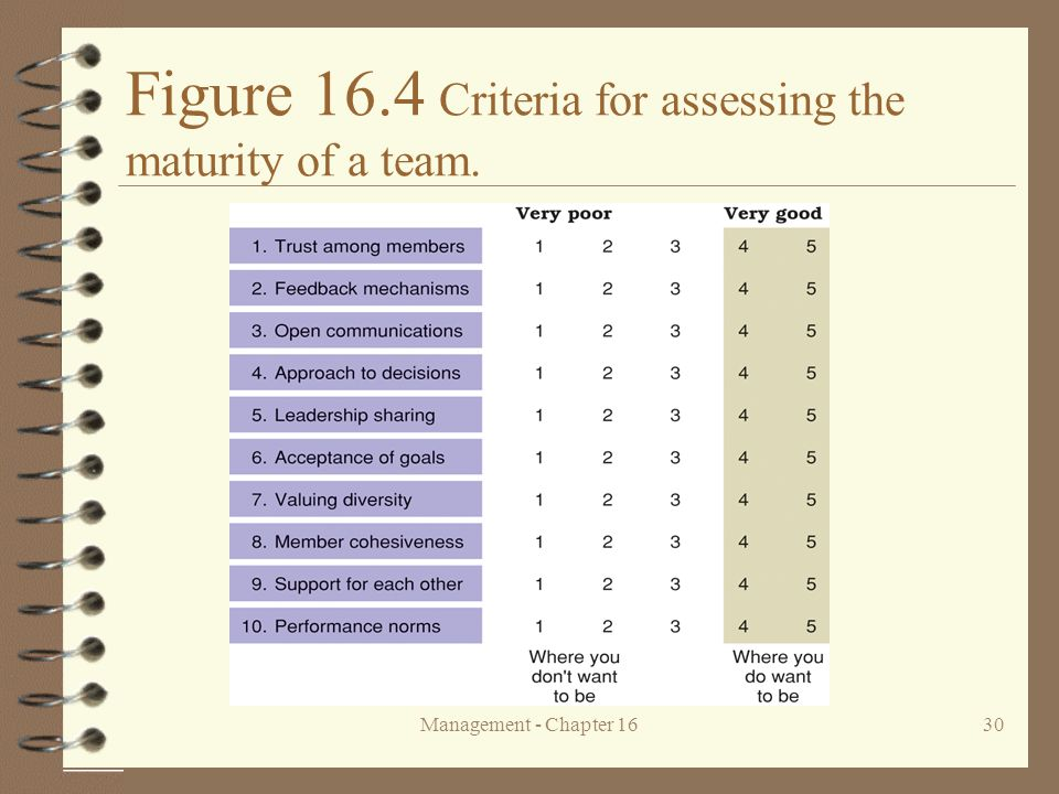 Figure 16.4 Criteria for assessing the maturity of a team.