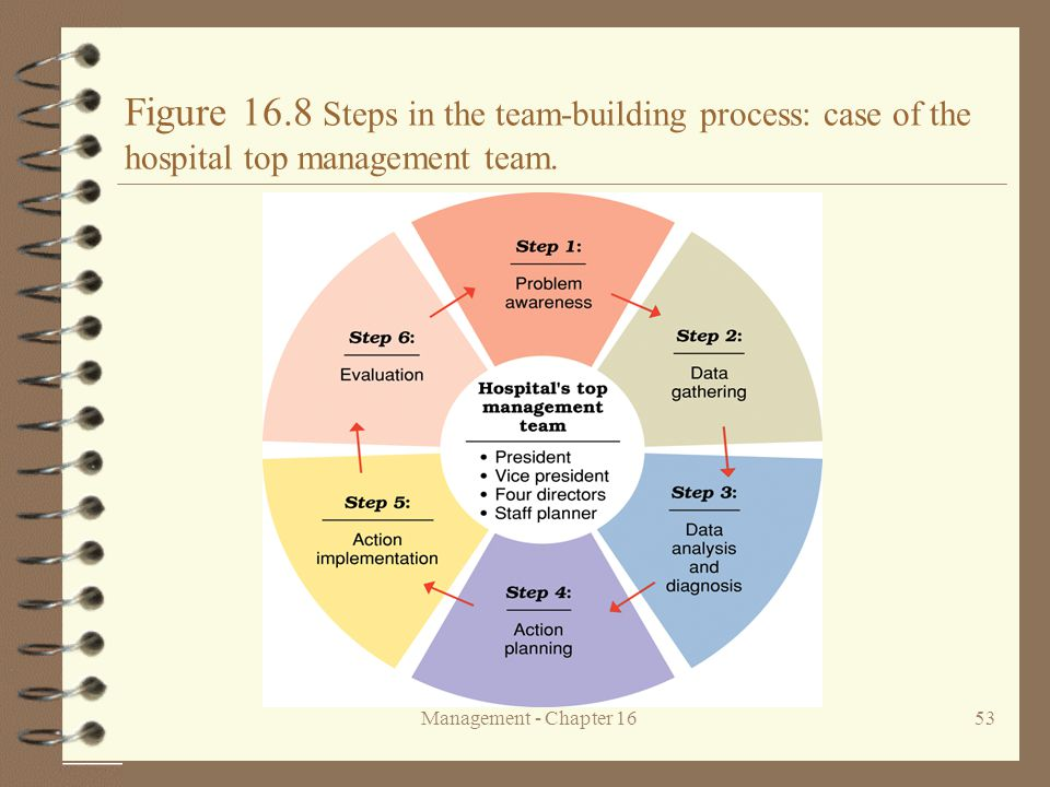 Figure 16.8 Steps in the team-building process: case of the hospital top management team.