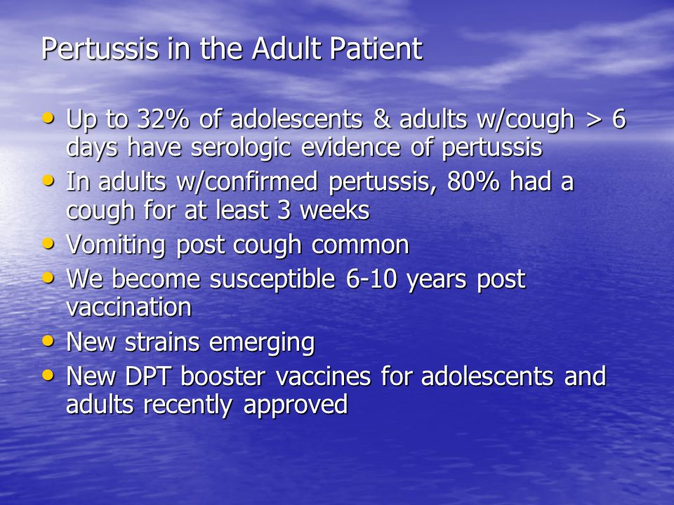 Pertussis in the Adult Patient