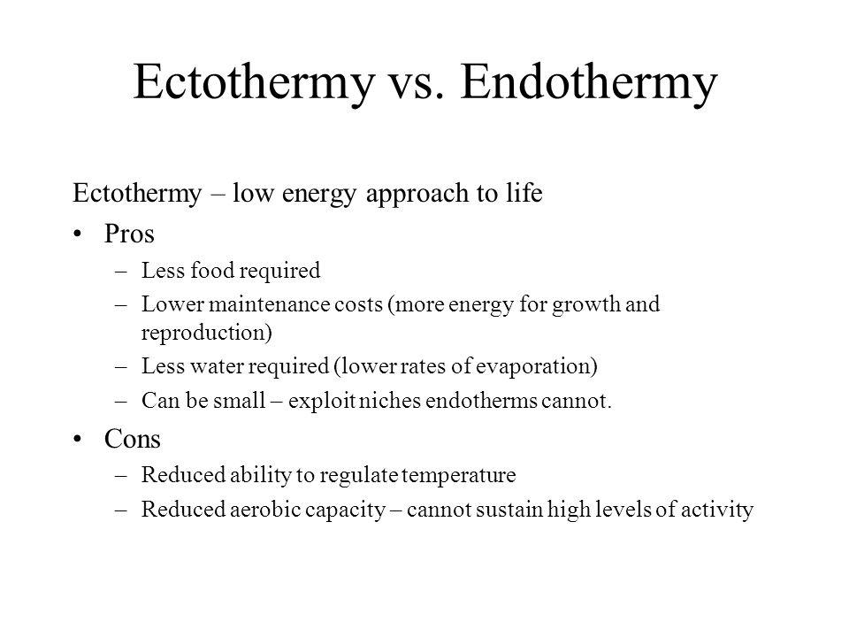 Ectothermy vs. Endothermy