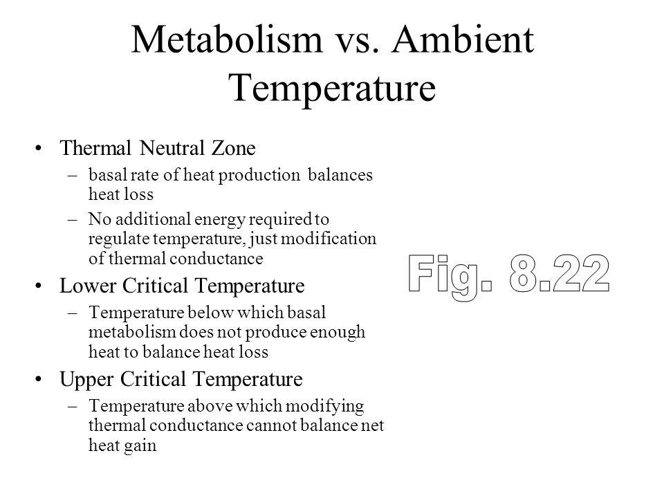 Metabolism vs. Ambient Temperature