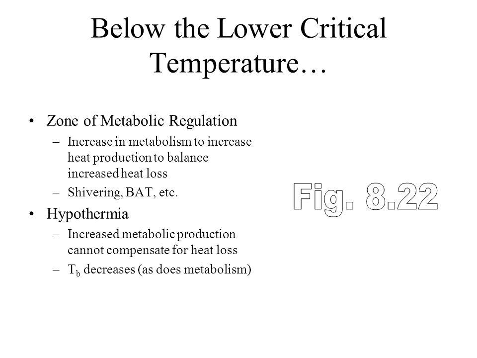 Below the Lower Critical Temperature…