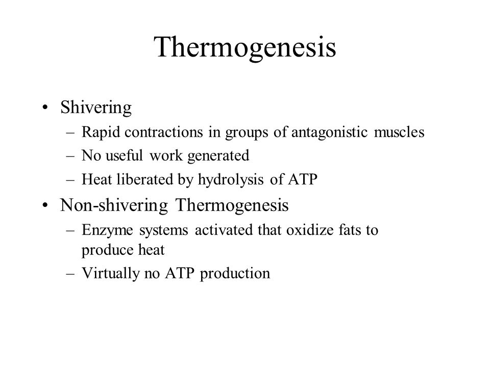 Thermogenesis Shivering Non-shivering Thermogenesis