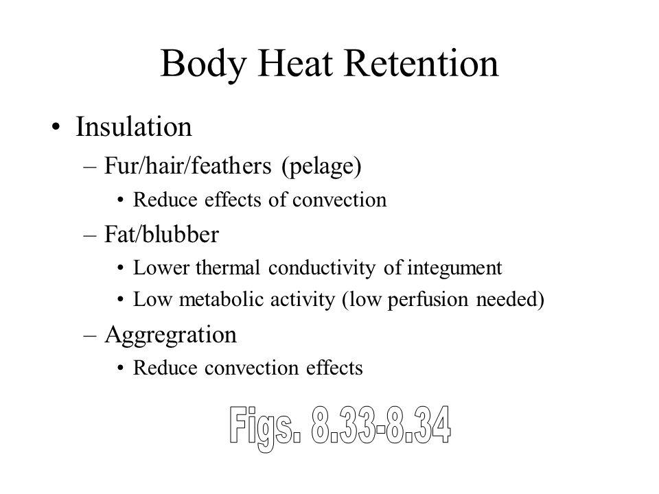 Body Heat Retention Figs. 8.33-8.34 Insulation