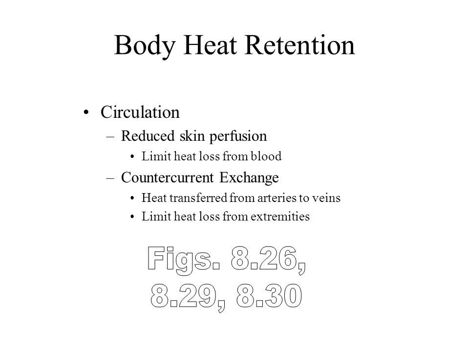 Body Heat Retention Figs. 8.26, 8.29, 8.30 Circulation