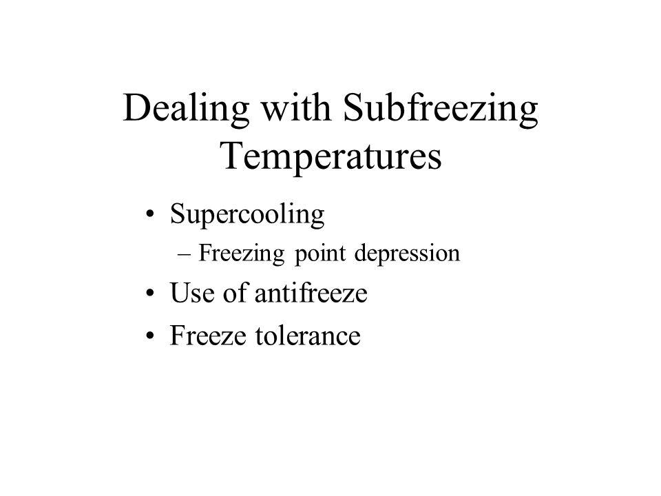Dealing with Subfreezing Temperatures