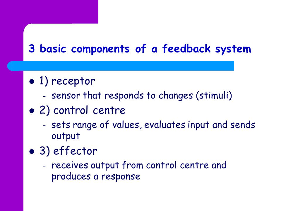 3 basic components of a feedback system