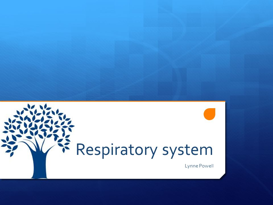 Respiratory system Lynne Powell
