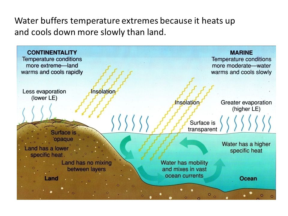 Water buffers temperature extremes because it heats up