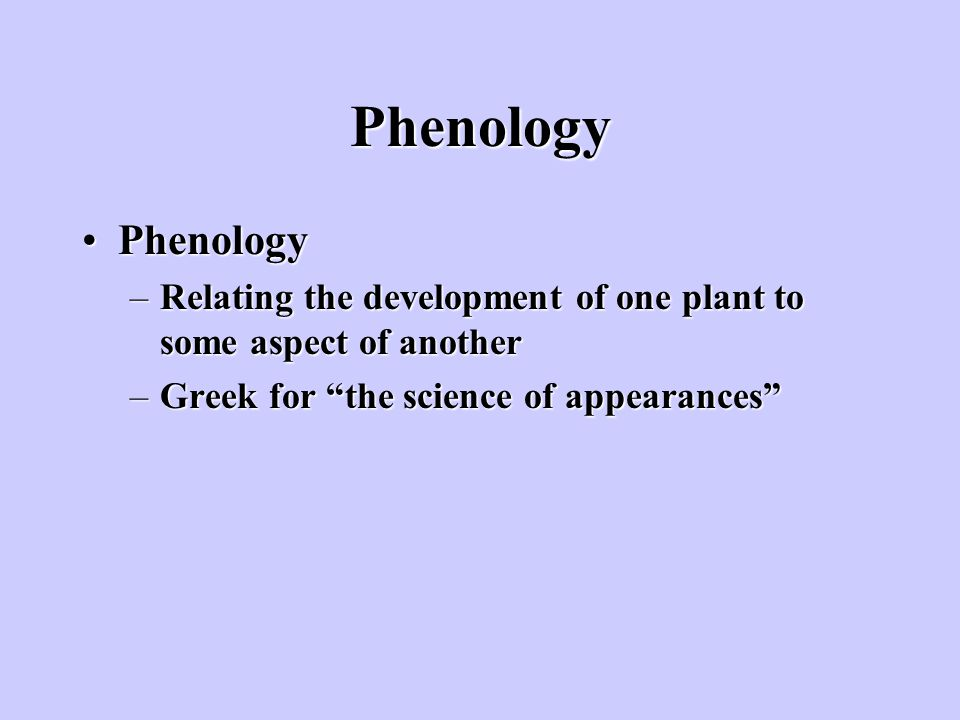 Phenology Phenology. Relating the development of one plant to some aspect of another.
