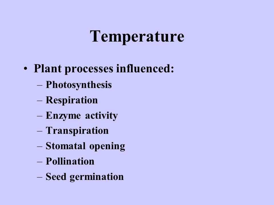 Temperature Plant processes influenced: Photosynthesis Respiration