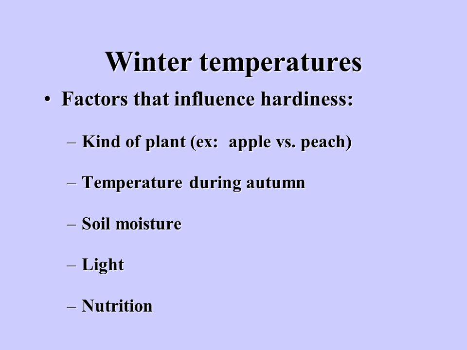 Winter temperatures Factors that influence hardiness: