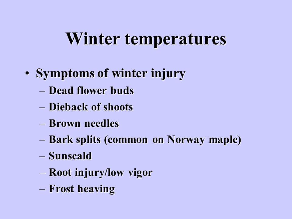 Winter temperatures Symptoms of winter injury Dead flower buds