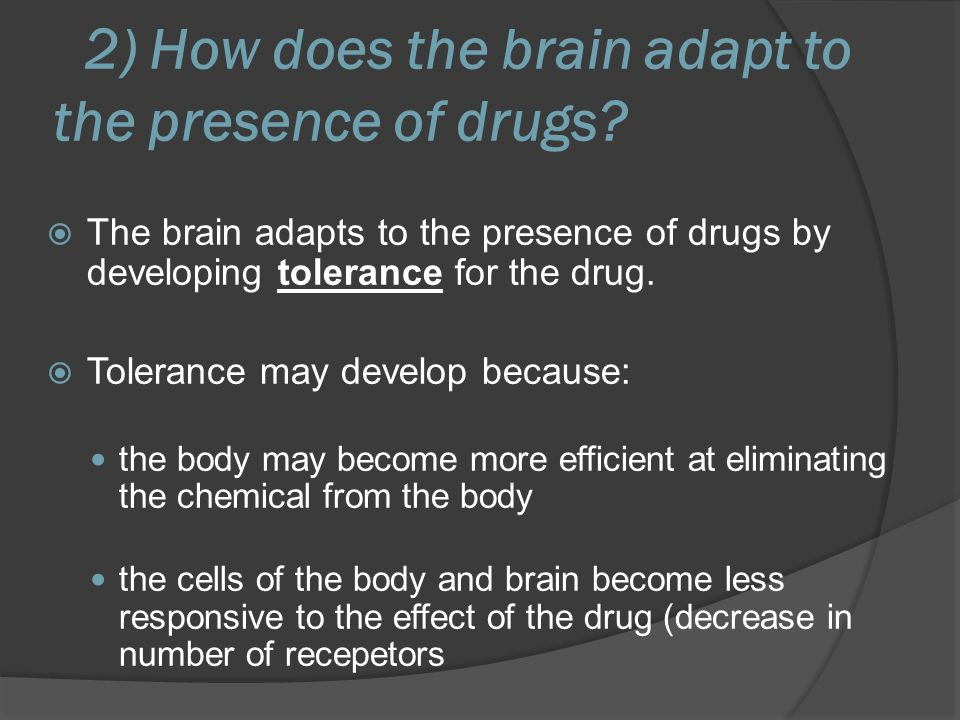 2) How does the brain adapt to the presence of drugs