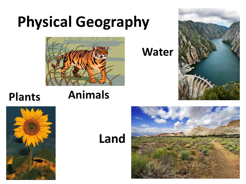 Physical Geography Water Animals Plants Land