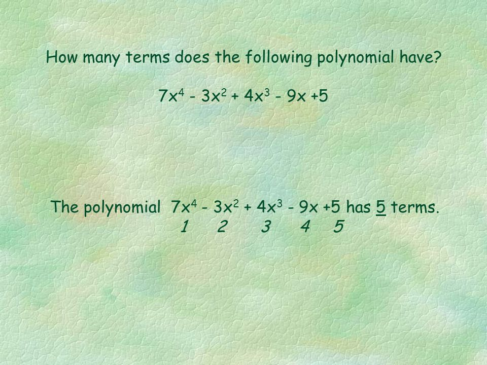 How many terms does the following polynomial have