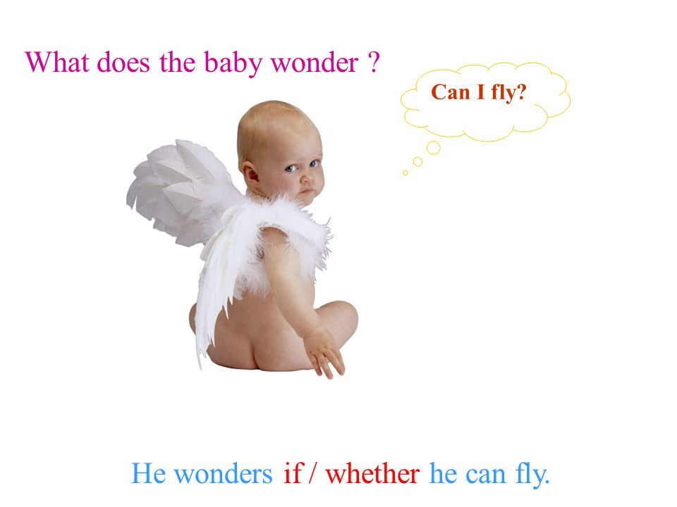 What does the baby wonder