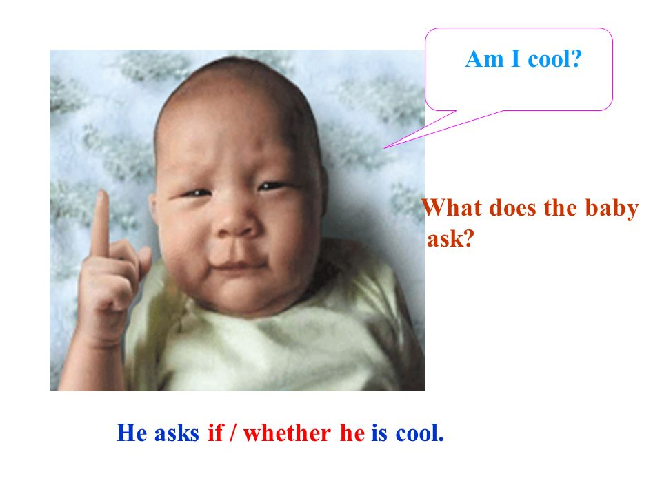 Am I cool What does the baby ask He asks if / whether he is cool.