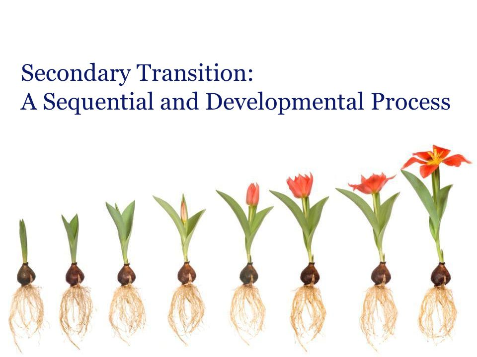 Secondary Transition: A Sequential and Developmental Process
