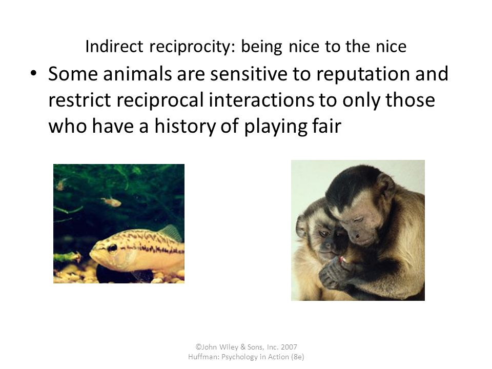 Indirect reciprocity: being nice to the nice