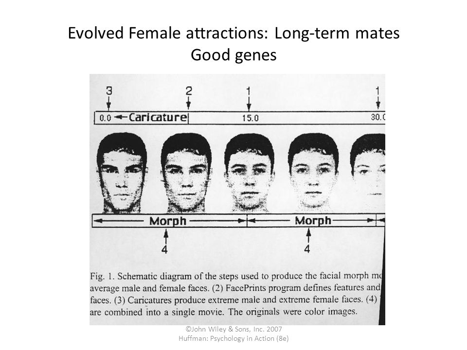 Evolved Female attractions: Long-term mates Good genes