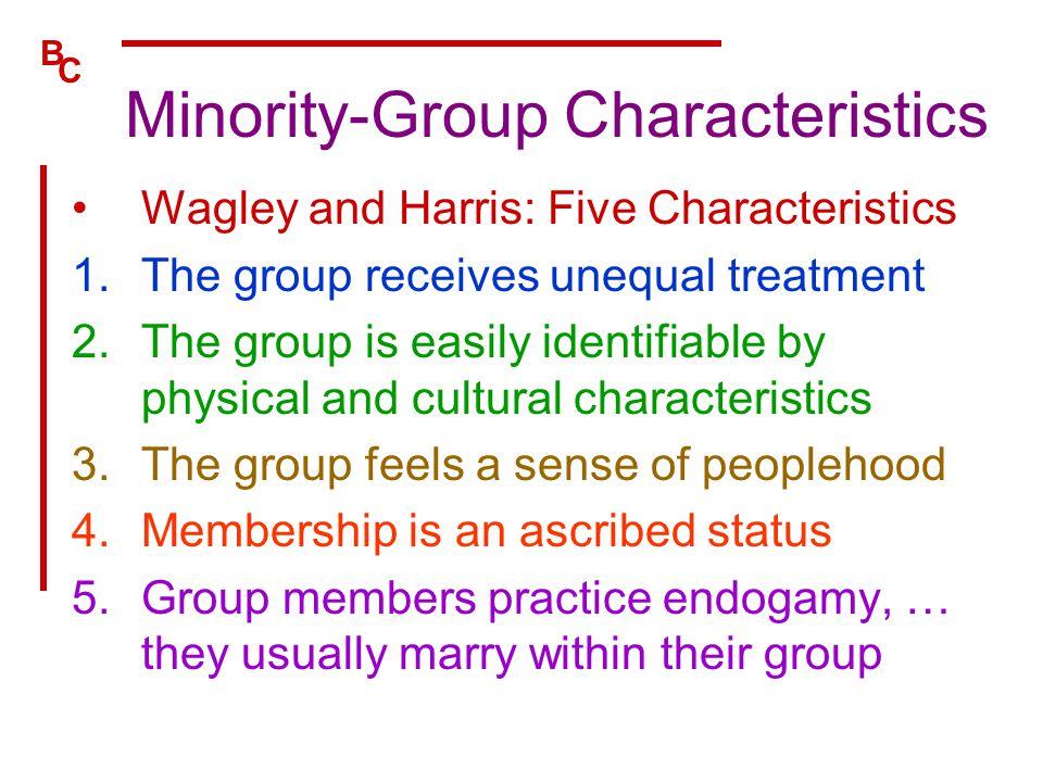 Minority-Group Characteristics