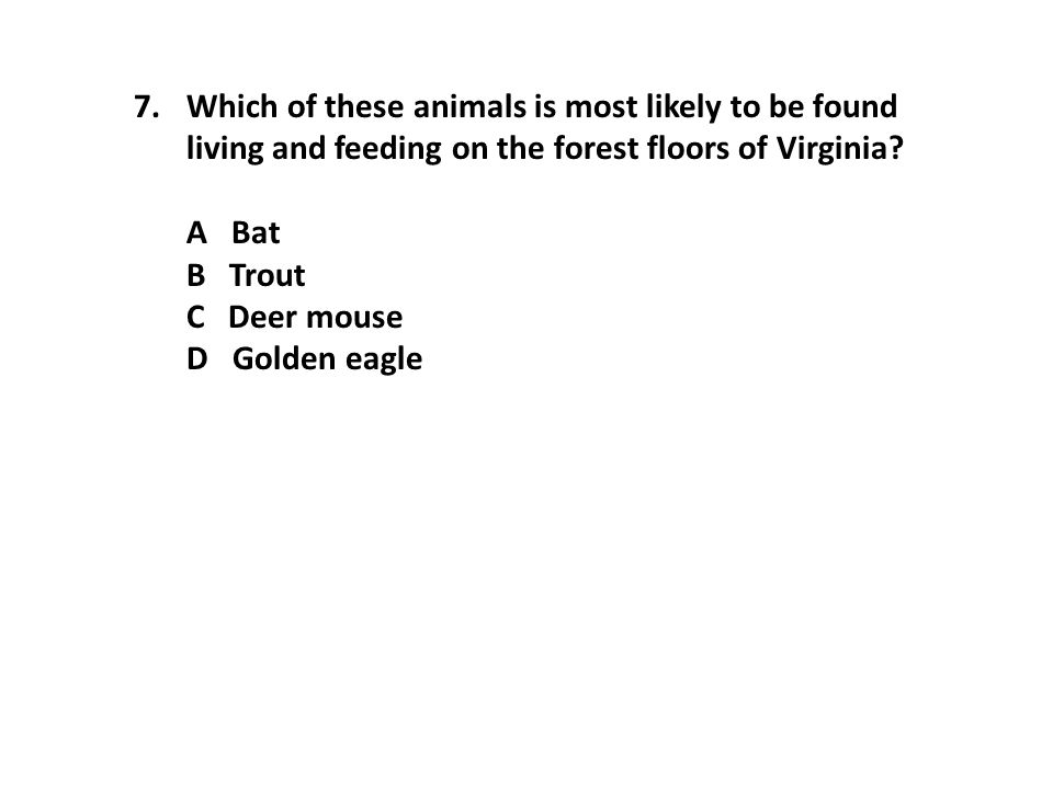 Which of these animals is most likely to be found living and feeding on the forest floors of Virginia