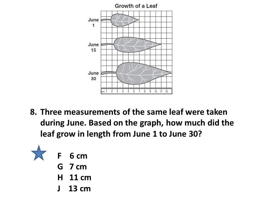 Three measurements of the same leaf were taken during June