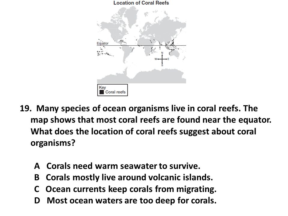 Many species of ocean organisms live in coral reefs