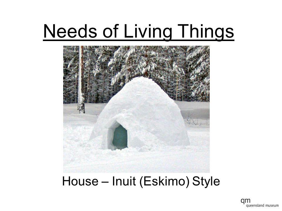 House – Inuit (Eskimo) Style