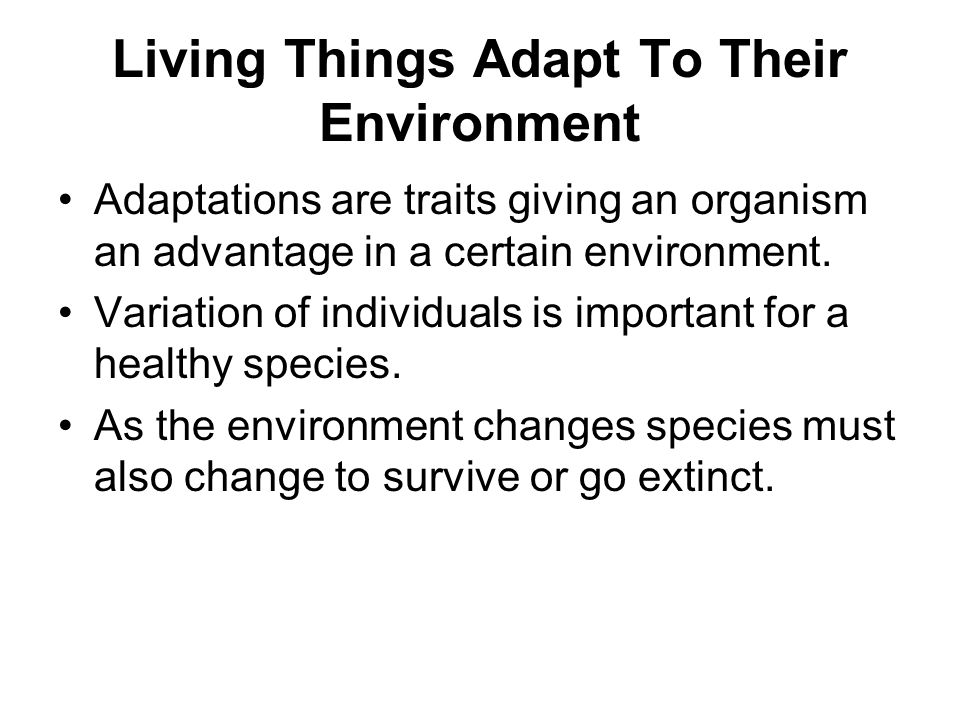 Living Things Adapt To Their Environment