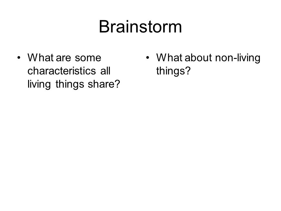 Brainstorm What are some characteristics all living things share