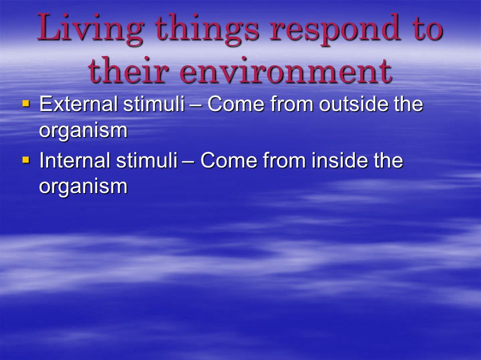 Living things respond to their environment