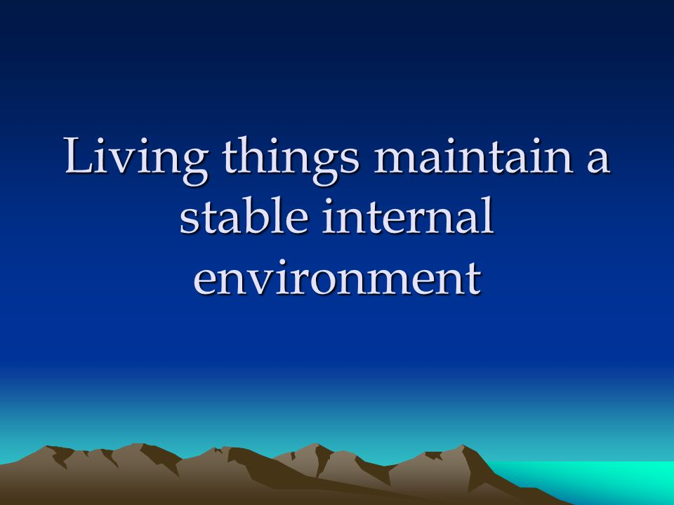 Living things maintain a stable internal environment