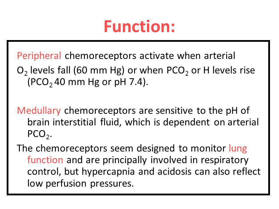 Function: Peripheral chemoreceptors activate when arterial
