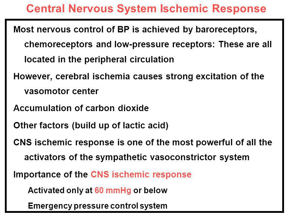 Central Nervous System Ischemic Response