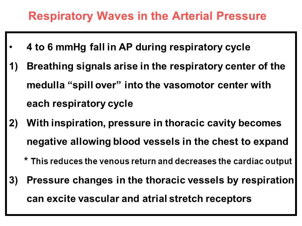 Respiratory Waves in the Arterial Pressure