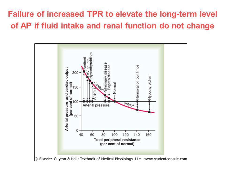 Failure of increased TPR to elevate the long-term level of AP if fluid intake and renal function do not change