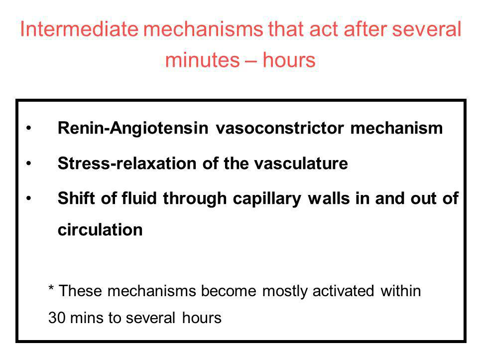 Intermediate mechanisms that act after several minutes – hours